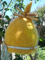 Yellow hat in the tree